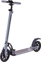 Самокат Ridex Project (серый) -