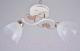Потолочный светильник Mirastyle KL-7107/2 -