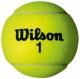 Набор теннисных мячей Wilson Championship / WRT110000 (4шт) -