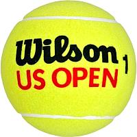 Набор теннисных мячей Wilson US Open Extra Duty / WRT116200 (4шт) -