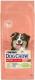 Корм для собак Dog Chow Active с курицей полнорационный (14кг) -