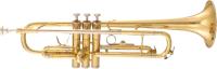 Труба Maxtone TTC-60/L-2 -