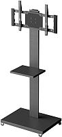 Стойка для ТВ/аппаратуры Holder PR-107 (черный) -