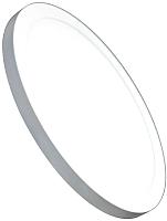 Точечный светильник Truenergy 12W 4000K 10832 -