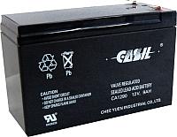 Мотоаккумулятор Casil CA1290 (9 А/ч) -