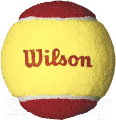 Набор теннисных мячей Wilson Starter Red / WRT137001