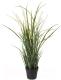 Искусственное растение Ikea Фейка 804.339.38 -