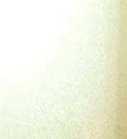 Рулонная штора Lm Decor Жаккард LM 66-02 (61x160) -