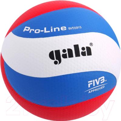 Мяч волейбольный Gala Sport Pro-Line 10 FIVB / BV5591S (размер 5, белый/голубой/красный)