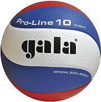 Мяч волейбольный Gala Sport Pro-Line 10 / BV5581S (размер 5, белый/голубой/красный) -
