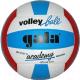Мяч волейбольный Gala Sport Academy / BV5181S (размер 5, белый/синий/красный) -