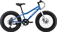 Детский велосипед Black One Monster 20 D 2019 (голубой/серебристый) -