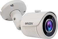 Аналоговая камера Ginzzu HAB-5031A -