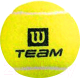 Набор теннисных мячей Wilson TeamW Practice / WRT111900 (4шт) -