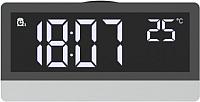 Радиочасы Ritmix RRC-1870T -