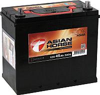 Автомобильный аккумулятор Asian Horse 45 JR с адаптером (45 А/ч) -